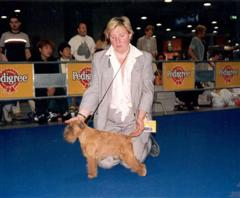 W Ch Pamelot s Noble Antics 11 years old in Milan World Show 2000
